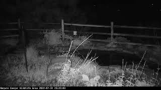 Preview of stream Los Alamos Nature Center Wildlife Camera, USA