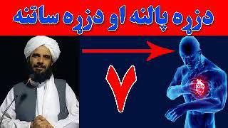 Mohammad Yasin Fahim Pashto Islami Bayan  Part 7   دزړه پالنه او دزړه ساتنه