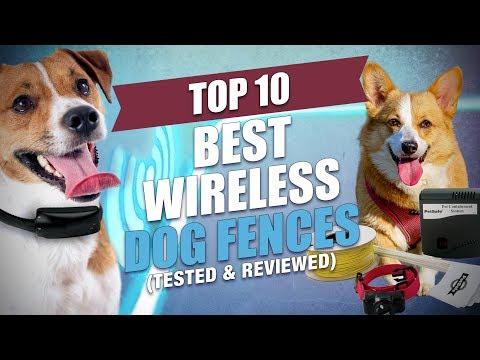 Top 10 Best Wireless Dog Fence Systems of 2018 (Tested and Reviewed)