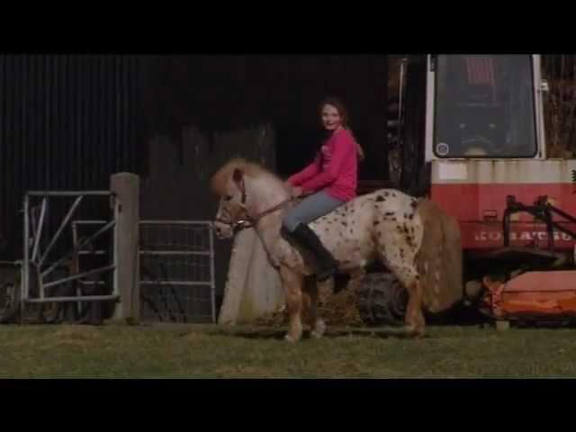 De Zomerhof: Dierentolk Mieke Zomer communiceert met pony Pinkeltje voor de VPRO