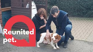 Dog owners reunited with their pet pooch six years after she was stolen   SWNS