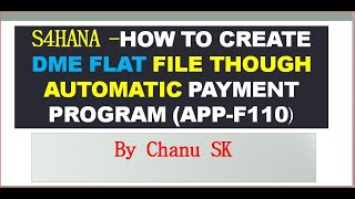 S4HANA- How to Create DME Flat File though Automatic Payment Program (APP-F110)