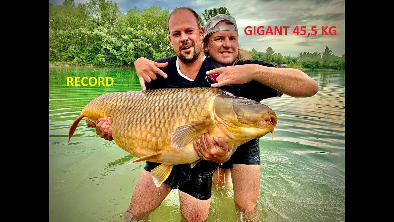 GIGANT CARP 45,5 kg!