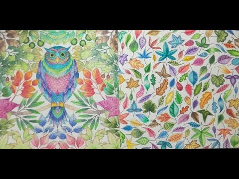 FULLY COMPLETED Johanna Basford Secret Garden - A Flip Through - YouTube