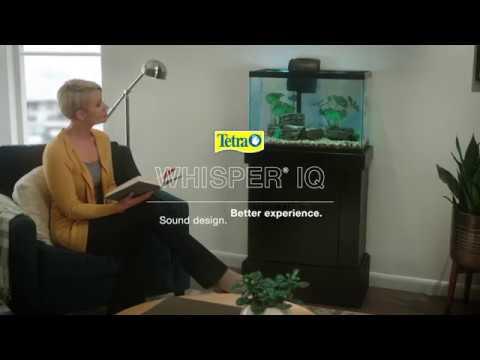 Tetra® Whisper® IQ filtration — Silence that speaks volumes.