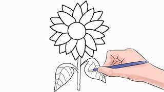 How to Draw a Sunflower Easy Step by Step