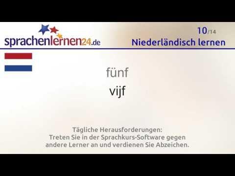 Lernen Sie Die Wichtigsten Wörter Auf Niederländisch