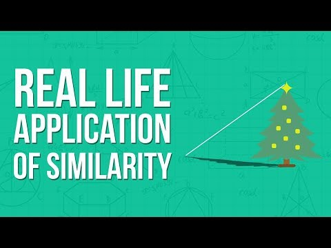applications of dbms in real life