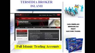 Смотреть Мофт  Международное Объединение Форекс Трейдеров «Traders Union» - Мофт Объединение Форекс