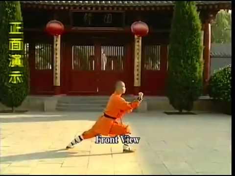 2.Shaolin Qixing Tanglang Plum Blossom Form