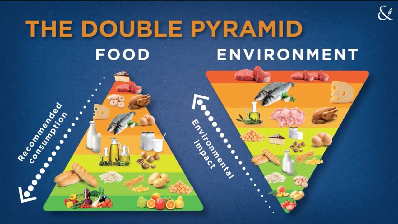 The BCFN Foundation double Food and Environment Pyramid