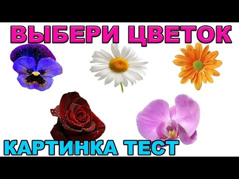 ТЕСТ КАРТИНКА ВЫБЕРИ ЦВЕТОК