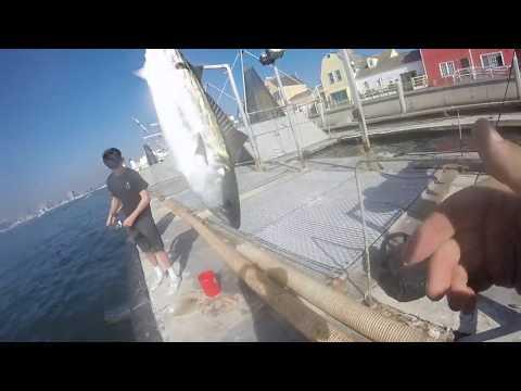 Meeting A Sub On The Marina Del Rey Baitdock!! (Los Angeles Fishing)