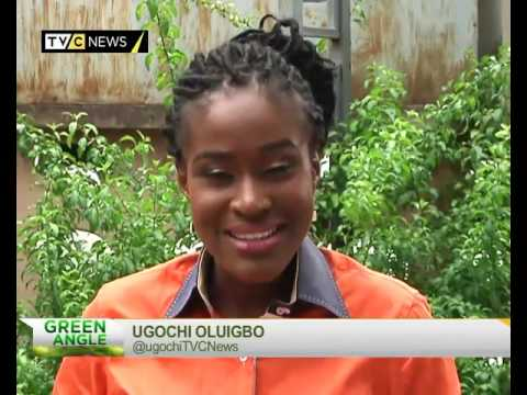 Green Angle | Wildlife conservation | TVC Nigeria