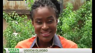 Green Angle | Wildlife conservation | TVC Nigeria