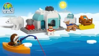 LEGO® DUPLO® - Арктика(Маленьким любителям живої природи обов'язково сподобається цей простий у складанні арктичний набір. Соба..., 2016-01-14T15:00:50.000Z)
