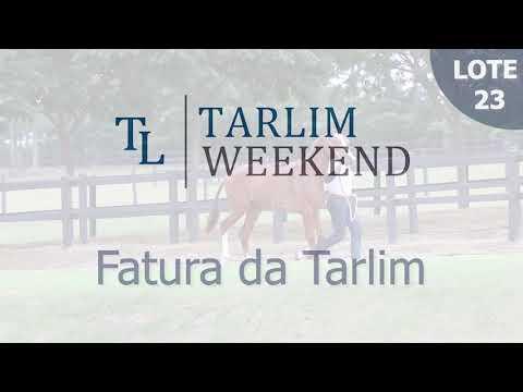Lote 23 - Fatura da Tarlim (6° Leilão Tarlim)