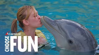 Dolphin Swim and Ride, with Unlimited Food & Drink - Cozumel, Mexico
