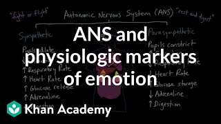 Autonomic Nervous System (ANS) and Physiologic Markers of Emotion
