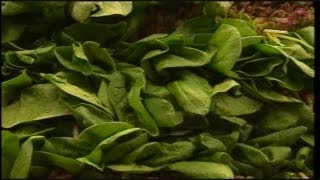 Voluntary recall of baby spinach
