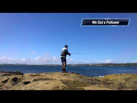 Dave Austin - Squid Fishing After Heavy Rain