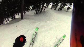 Jackson Hole's Bivouac Woods Thumbnail