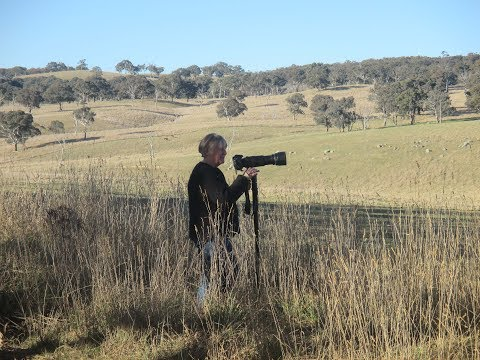Visit Wendy Smith - Photographer @ Newbridge - Bathurst Arts Trail