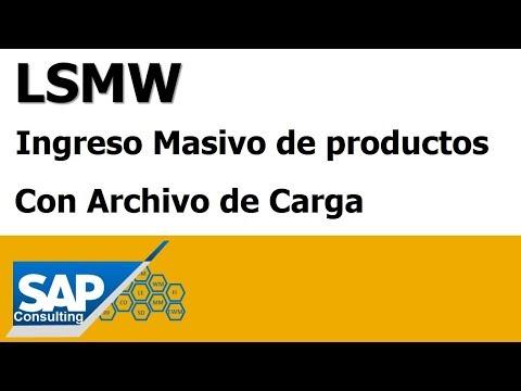 lsmw-entrada-masiva-de-pedidos-con-archivo-de-carga-✅