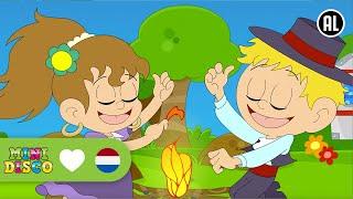 Minidisco - Zigeunermeisje