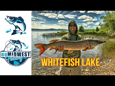 Whitefish Lake At Come By Chance Resort: Ontario, Canada: June 25-29th