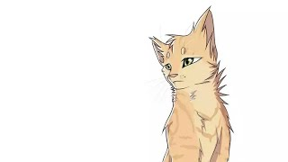 Коты Воители Песчаная буря - Клип Киса Киса мяу мяу(заказ)