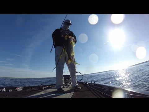 Mark Daniels Jr. Catching Bass and Bowfin on Lake Okeechobee