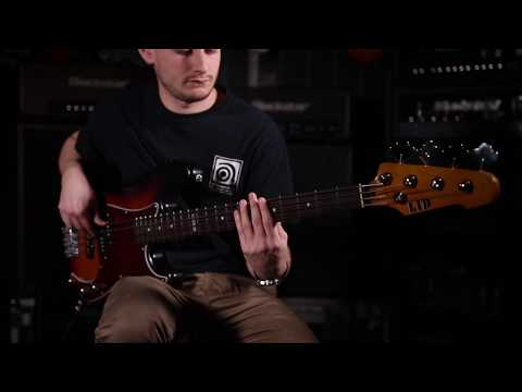 Ampeg BA-115 - A Quick Look With Ampeg Australia