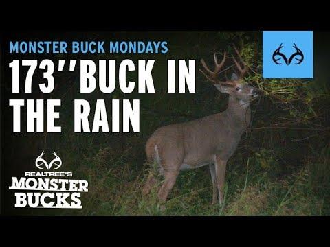 Hunting In The Rain | Giant Whitetail Buck | Monster Bucks Mondays