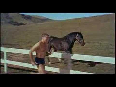 画像: The Swimmer (1968) - Theatrical Trailer youtu.be