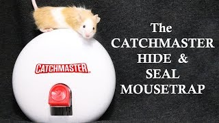The CATCHMASTER Hide & Seal Mousetrap. Mousetrap Monday