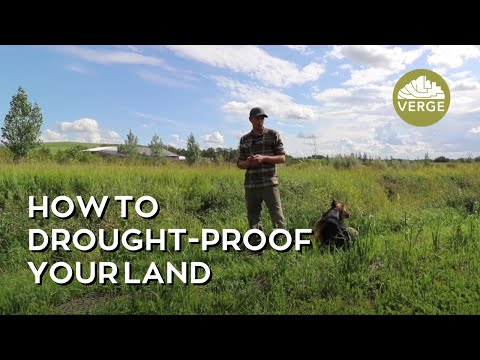 Farm Scale Drought-Proofing: Water Harvesting for Land Regeneration with Permaculture Design