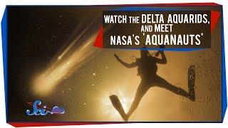 Watch the Delta Aquarids, and Meet NASA