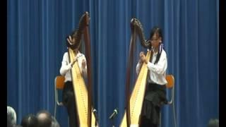 紡織學會美國商會 胡漢輝中學 band 豎琴 1314