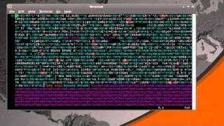 Wordpress TimThumb Exploit (Remote Code Execution)