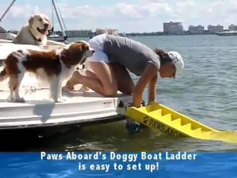 Paws Aboard Doggy Boat Ladder Set Up Youtube