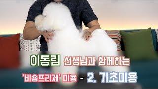 [애견미용] 비숑프리제 2. 기초미용 | Dog treatment for Bichon frise 2. Basic treatment