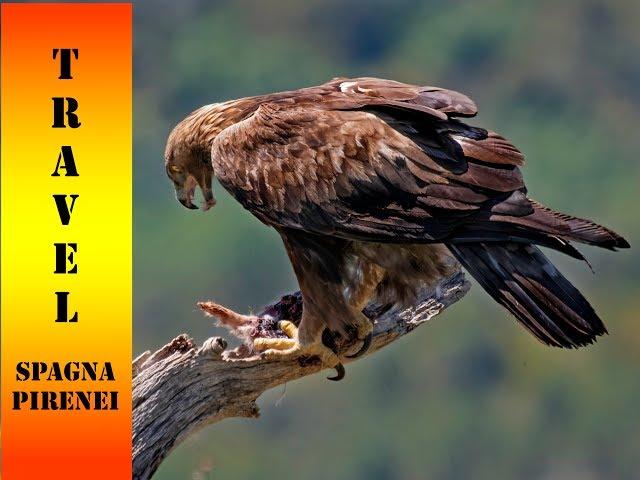 Travel photo Spagna -pirenei-  2019