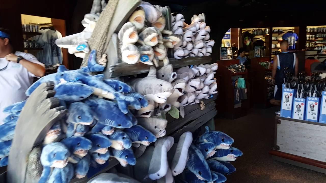 Mako Gift Shop And Shark Realm Opening at SeaWorld Orlando - YouTube