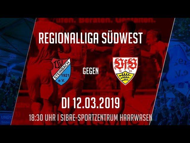 TSV Steinbach Haiger - VfB Stuttgart U21 2:2 (Regionalliga Südwest 2018-19)