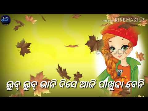 Sambalpuri Status Utki Utki Nachche (song Uma ....)