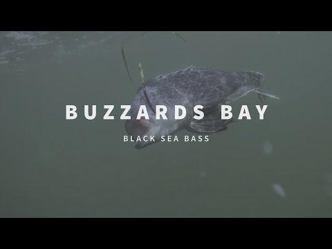 New England Fishing // Buzzards Bay // Episode 108