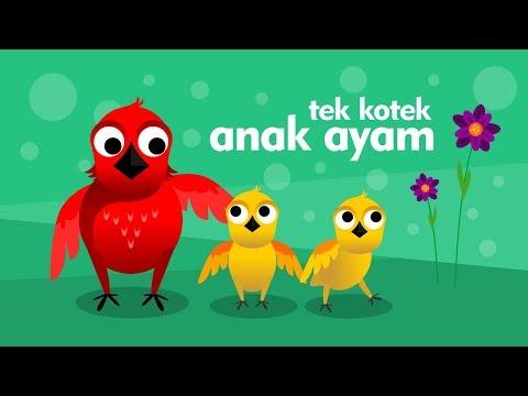 Tek Kotek (Anak Ayam) - Lagu Anak Indonesia Populer - menyanyi sambil belajar berhitung