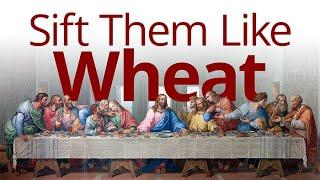 The Vortex — Sift Them Like Wheat
