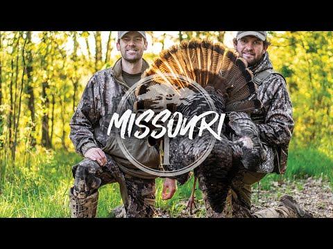 Turkey Hunting- Missouri Opener (Gobbler beats up a HEN decoy!)